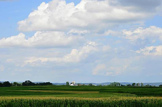 Lancaster Farm by Carole Rockman