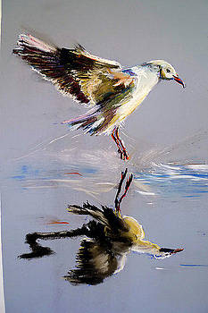 Landing by Shirley Roma Charlton