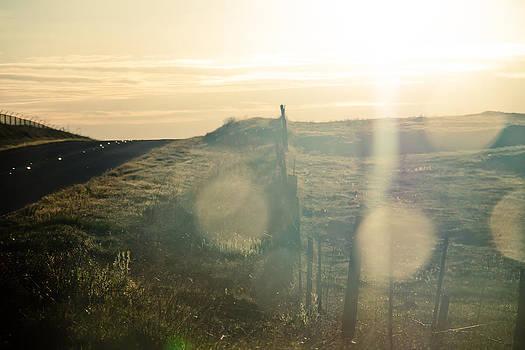 Landscape 7 by Jonah Vang