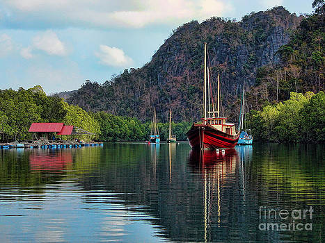 Langkawi Mangroves by Graham Taylor