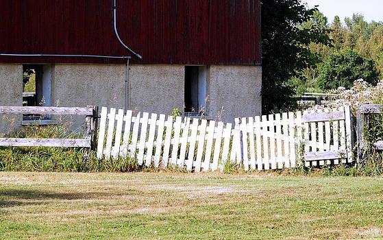 Large Gate by Kristal Kobold