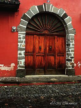 Large Wood Door by Alisa Seneor