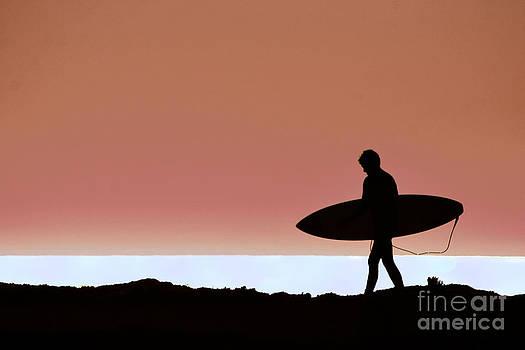 Last Wave by David Taylor