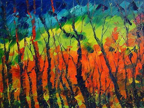 Late Autumn by Avi Gorzhaltsan