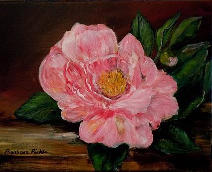 Late Bloomer by Barbara Pirkle