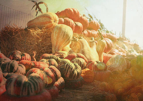 Late Fall Harvest by Loud Waterfall Photography Chelsea Sullens