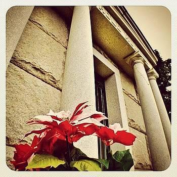 #laurelhill #cemetery #philadelphia by Robyn Montella