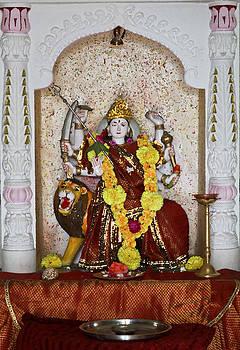 Kantilal Patel - Laxmi Fortune God