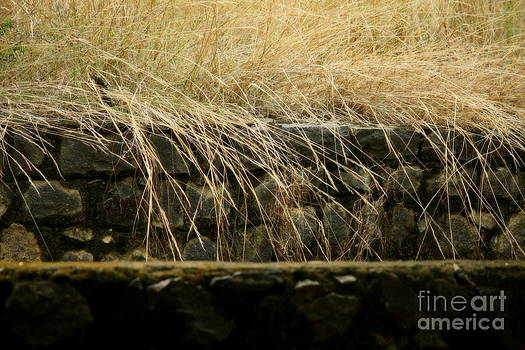 Layers by Vishakha Bhagat
