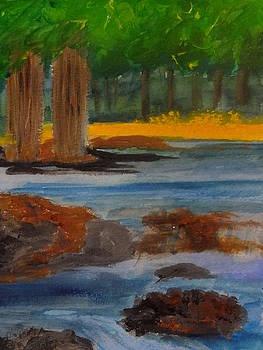 Nancy Fillip - Lazy River