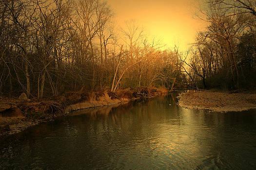 Nina Fosdick - lazy river