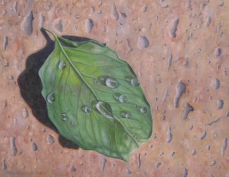 Leaf II by Pera  Schillings
