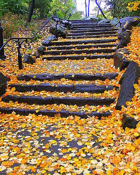 Leafy Stairs by Maria Scarfone