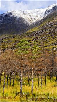 Leatach from Glen Torridon Scotland by George Hodlin