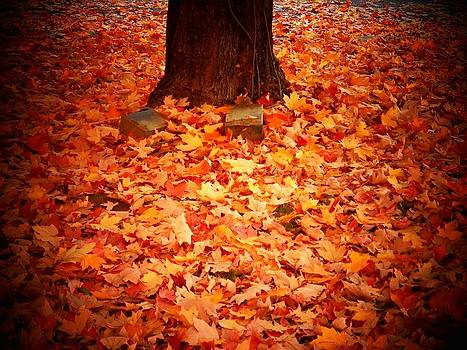 Leaves on the Ground by Joyce Kimble Smith
