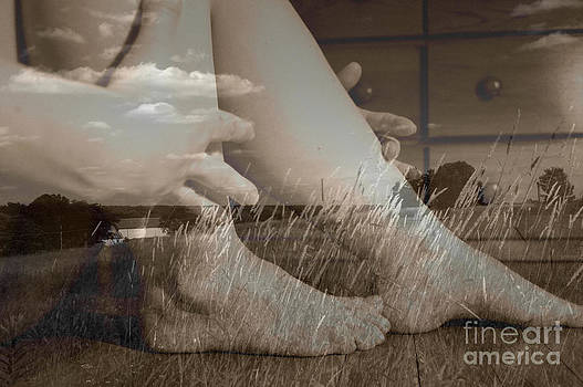 Leggy Fields by Trish Hale