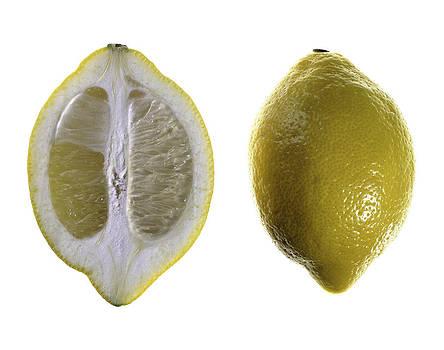 Lemon by Nathaniel Kolby