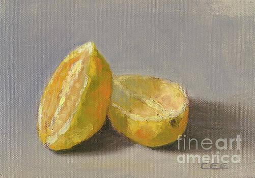 Lemons by Christa Eppinghaus