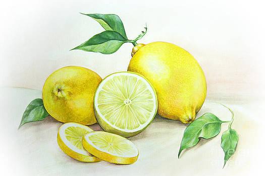 Lemons by Karin Russer