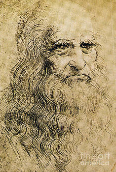 Science Source - Leonardo Da Vinci