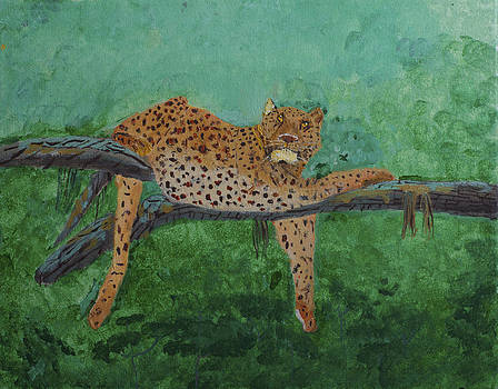 Leopard laying on a branch by Swabby Soileau