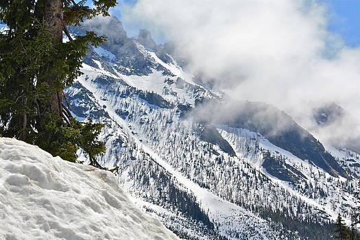 Let It Snow by Diana Hatcher