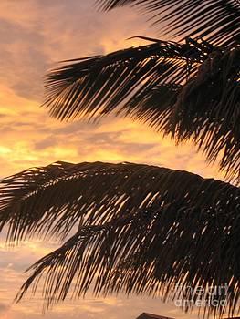 Lever Du Soleil - Ile De La Reunion by Francoise Leandre
