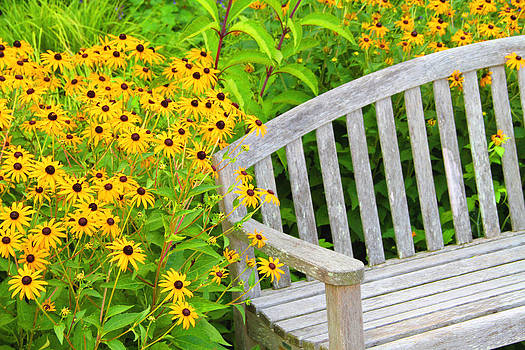 LG Bench by Troy  Skebo