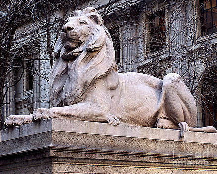 Anne Ferguson - Library Lion-New York City