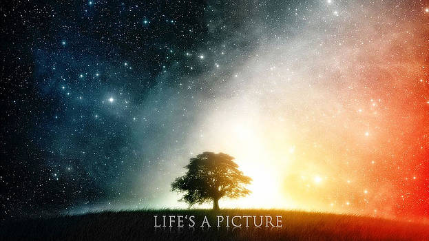 Life's A Picture by Andrew Webber