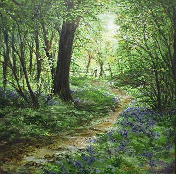 Life's Pathway 'El Sendero'  by Lizzy Forrester
