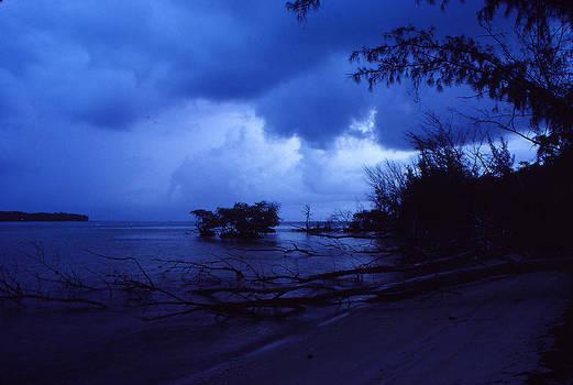 Lifting Storm by Bob Whitt