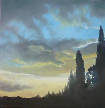 Light by Caroline Philp