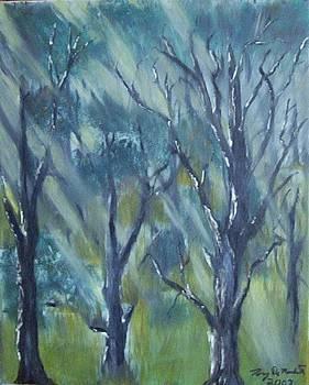 Light of the Trees by Tony  DeMerchant