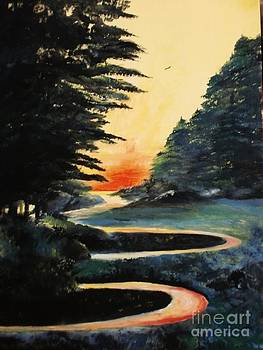 Lighted Path by Trilby Cole