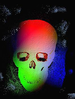 Lighted Skull by Mark Stidham