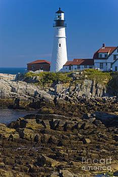 Tim Mulina - Lighthouse and Rocks