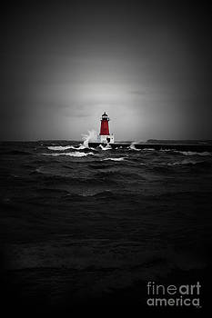 Ms Judi - Lighthouse Glow