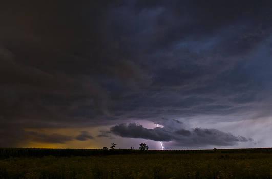 Lightning 2 by Jennifer Brindley