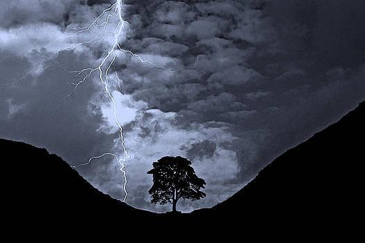 David Pringle - Lightning at Sycamore Gap