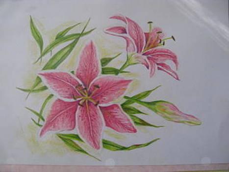 Lilies by Fran Haas