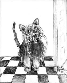 Lillie by the Door by Carol Allen Anfinsen
