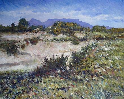 Lime Quarry at Robben Island Cape Town South Africa 1997 by Enver Larney