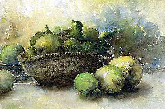 Limes and Lemons by Tania Vasylenko