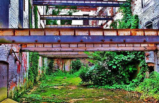 TSC Photography Timothy Cuffe Jr - Linear Rust