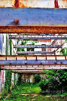 TSC Photography Timothy Cuffe Jr - Linear Rust Vert