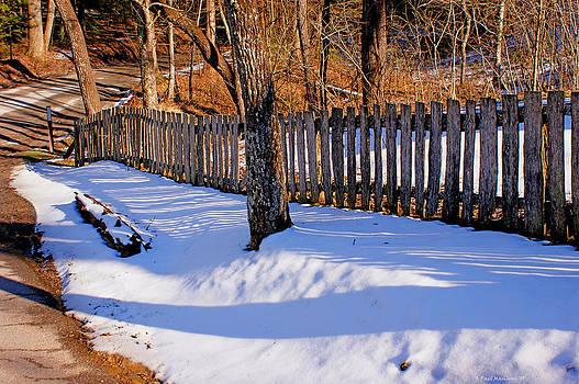 Paul Mashburn - Lines On The Snow
