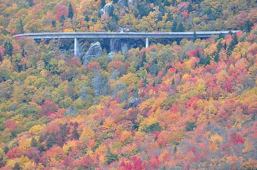 Linn Cove Viaduct at Blue Ridge Parkway by Jeff Moose
