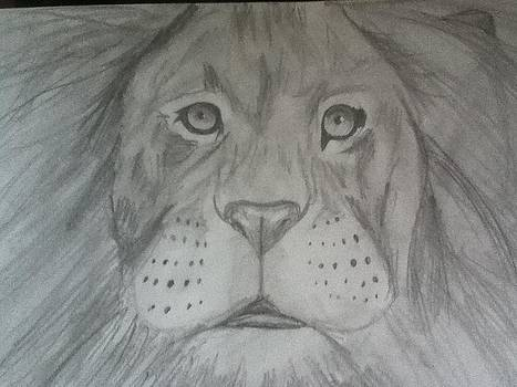 Lion Drawing by Shelby Rawlusyk