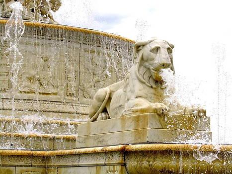 Lion Fountain by Stephanie Olsavsky